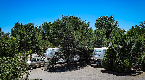 Plenty of Shade Trees at Kiva RV Park in Bosque NM